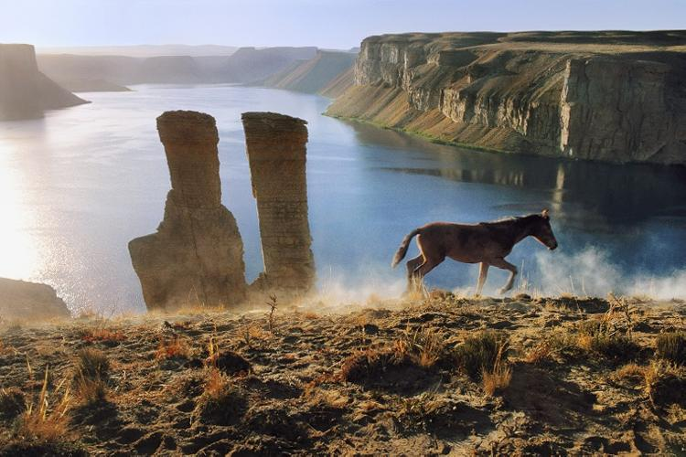 http://www.beetlesandhuxley.com/sites/default/files/stock-images/HORSE-AND-TWO-TOWERS-AT-BAND-E-AMIR-2002-by-STEVE-MCCURRY-Born-1950-C400081.jpg