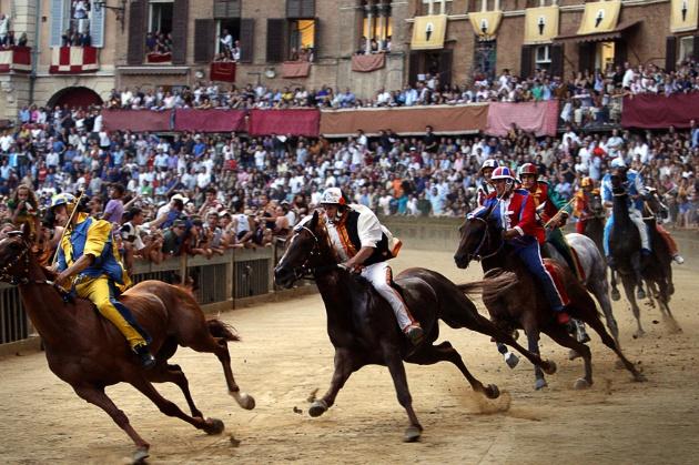http://www.intoscana.it/site/it/articolo/Palio-di-Siena-estratte-le-contrade-della-Tartuca-Oca-e-Nicchio/